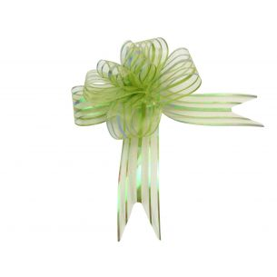green butterfly bow
